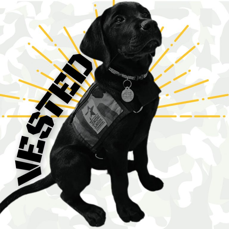 Vested: a Service Puppy Parent Diary